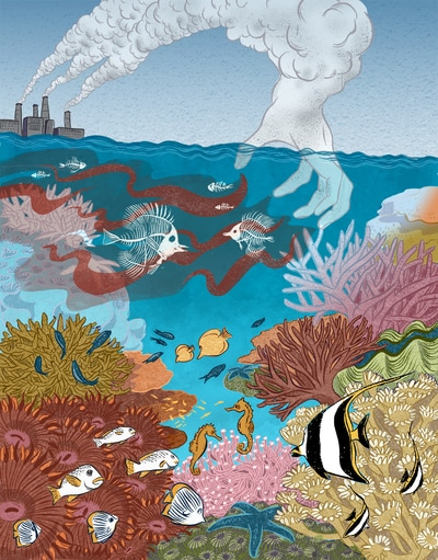 illustration coral reef climate change seahorse